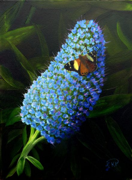 Australian Admiral Butterfly on a Blue Flower Oil Painting