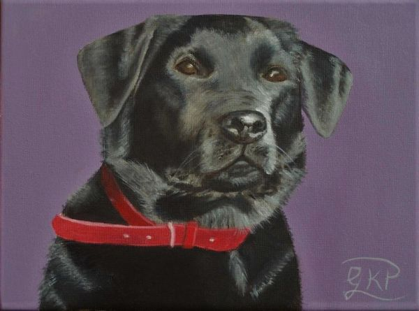 (Sold) Black Labrador (Chloe) - Commissioned Oil Painting (Sold)
